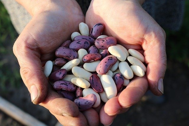 3 beneficios de las legumbres